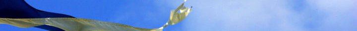 torn flag strip