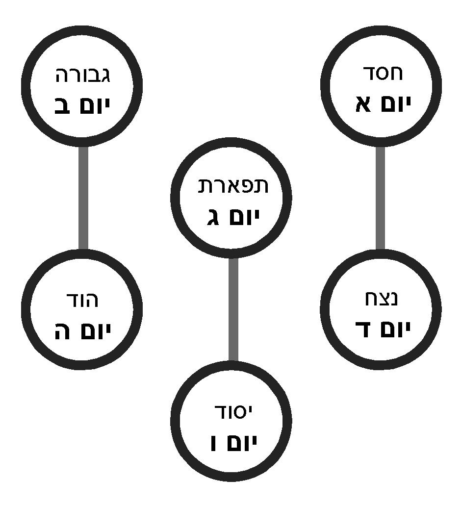 תרשים 9